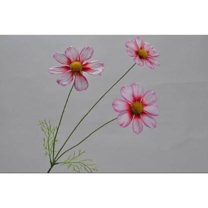 Sedmikráska růžová/červená 77 cm_0
