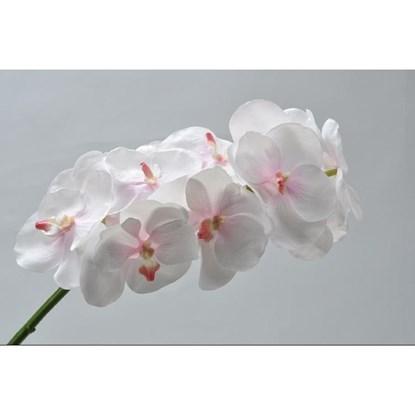 Orchidej Vanda sv.růžová 89 cm_0