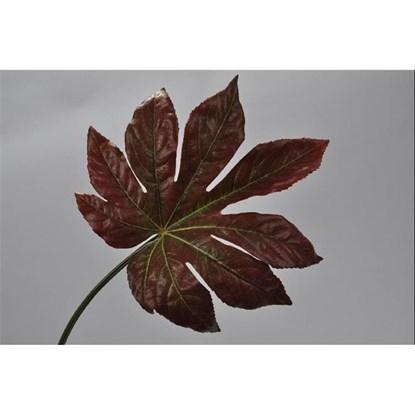 List červenozelený 55 cm_0
