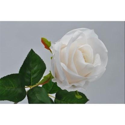 Růže sv.broskvová/krémová 48 cm_0
