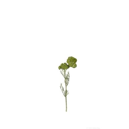 Řebříček 52 cm zelený_0