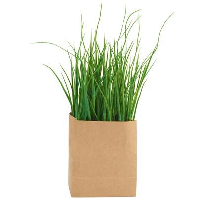 Travina v papírovém obalu_0