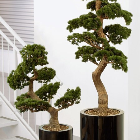 Obrázek pro kategorii Umelé stromy a rastliny