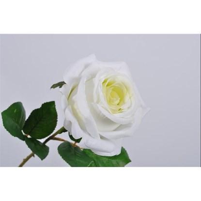 Růže bílá/sv. zelená_0