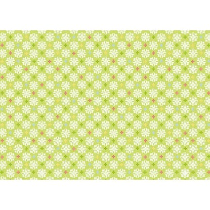Balicí papír 50x70cm Jacquard grün_0
