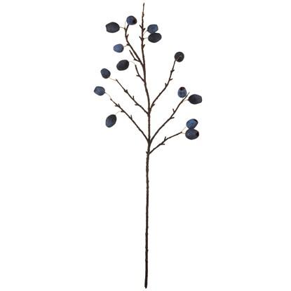 Větvička borůvky 68 cm ASA Selection_0