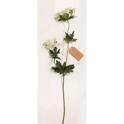 Větvička ASA selection 76 cm bílá_0