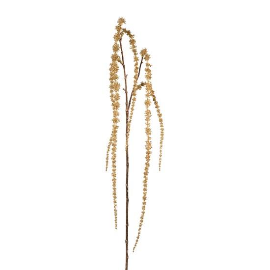 Amaranthus mit Glitter_0