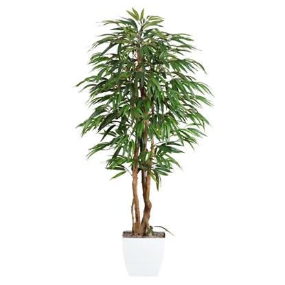 Strom Ficus 150 cm (plastový obal)_0